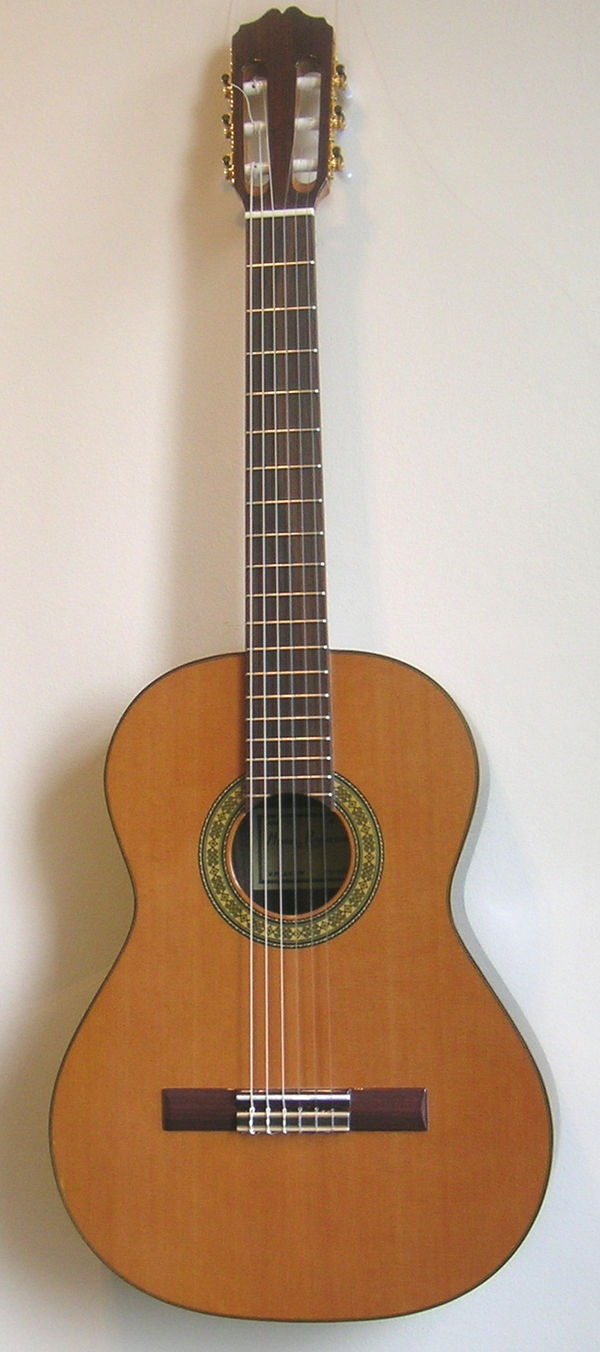 Raimundo C15s 63cm scale