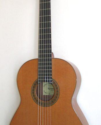 Raimundo Bossa Nova 1 Cedar