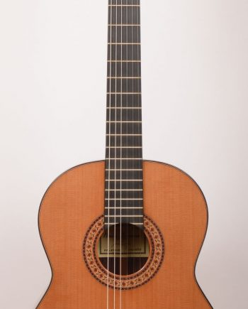 Raimundo 146 Cedar 64cm